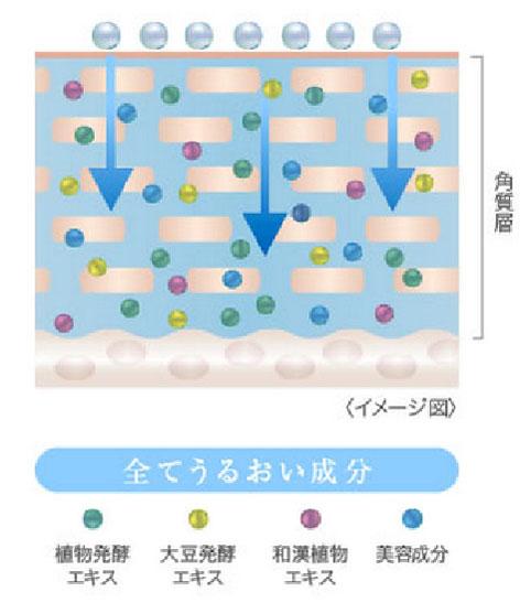 ナノ化コラーゲン