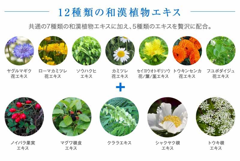 12種類の和漢植物エキス
