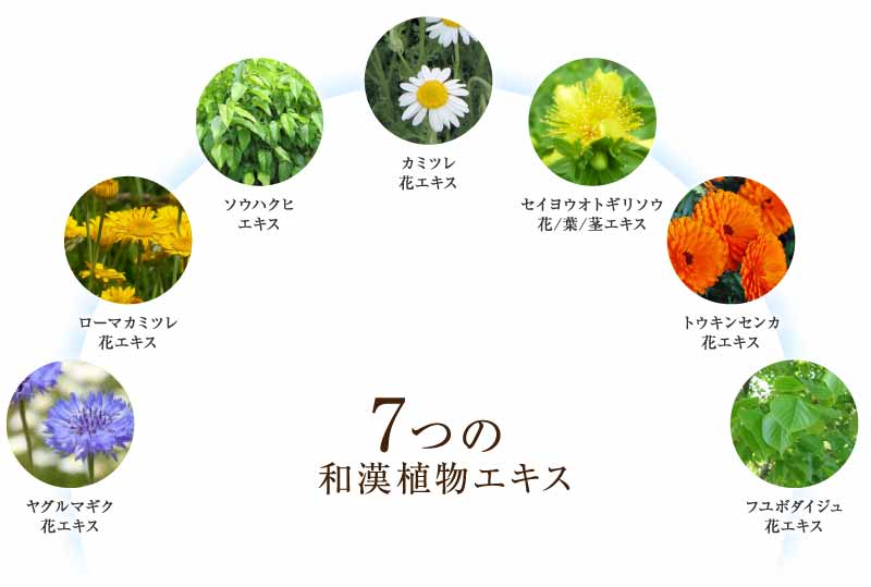 7つの和漢植物エキス