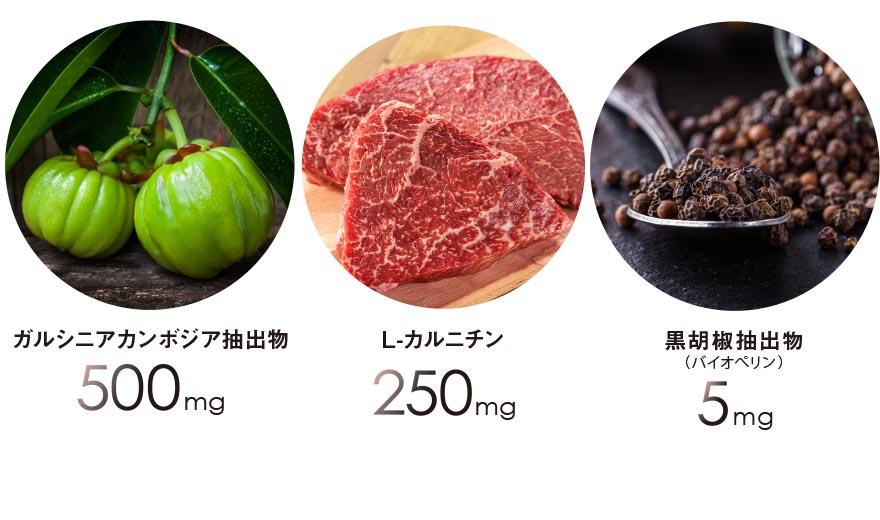ガルシニアカンボジア抽出物500mg、L-カルニチン 250mg、黒胡椒抽出物(バイオペリン)5mg